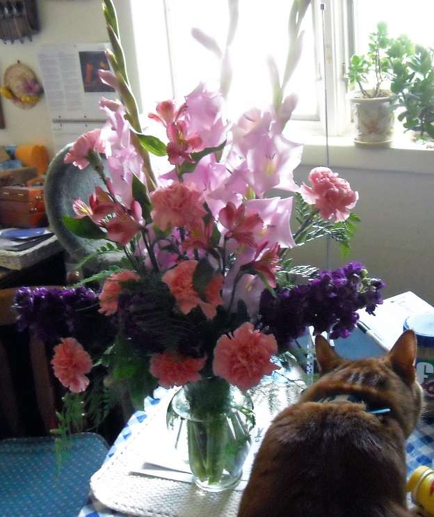 AWhen the florist sent the wrong bouquet to the house instead of the church, Louie had to check it out. Or maybe he just wanted to walk on the table. He was naughty that way!