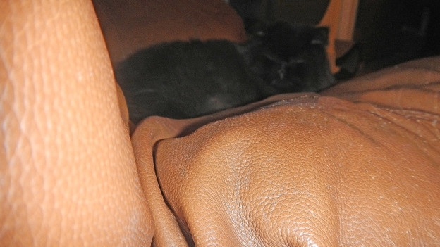 What's this? A dark presence in the recliner....!