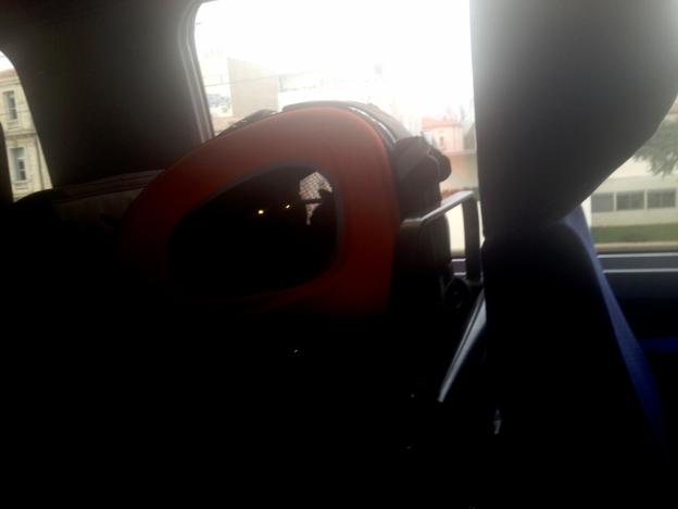 deborah's cats in taxi
