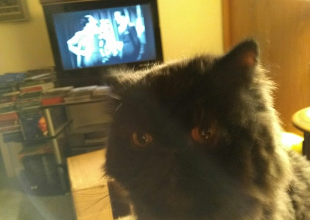 120716-dougy-looking-at-me-tv-in-back